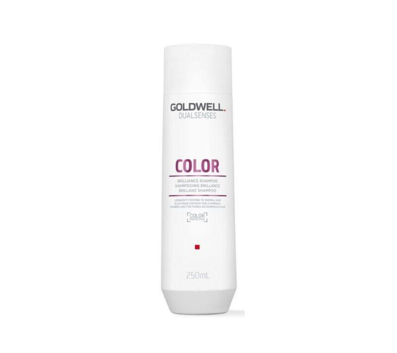 Goldwell Dualsenses Color Champú 250ml
